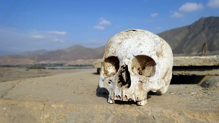titelo_skull_II